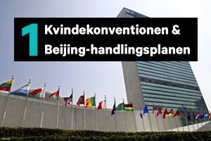 Kvindekonventionen & Beijing-handlingsplanen